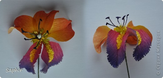 Сегодня сделались вот такие цветочки. Всё началось с того, что у меня появилась гофробумага, да не простая, а радужной расцветки.  фото 8