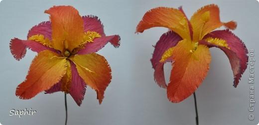 Сегодня сделались вот такие цветочки. Всё началось с того, что у меня появилась гофробумага, да не простая, а радужной расцветки.  фото 10