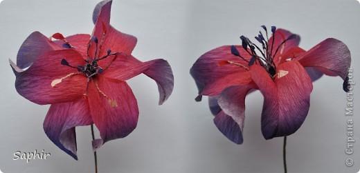 Сегодня сделались вот такие цветочки. Всё началось с того, что у меня появилась гофробумага, да не простая, а радужной расцветки.  фото 9