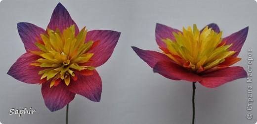 Сегодня сделались вот такие цветочки. Всё началось с того, что у меня появилась гофробумага, да не простая, а радужной расцветки.  фото 11