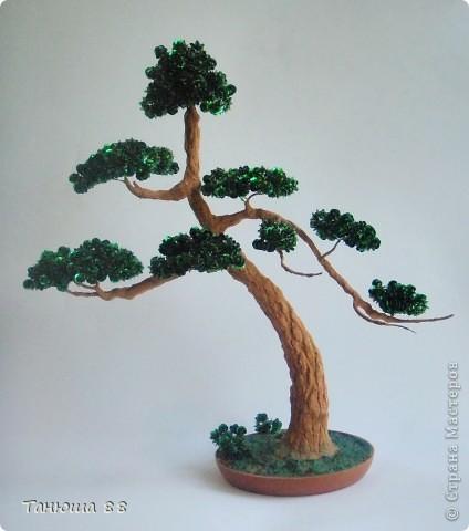 Деревце для Тани