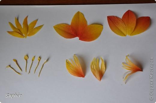 Сегодня сделались вот такие цветочки. Всё началось с того, что у меня появилась гофробумага, да не простая, а радужной расцветки.  фото 5