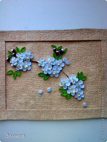 Здравствуйте!Хочу показать небольшую работу,которая называется цветение вишни.Ну вот,осень на дворе-а у меня весна!Работа небольшая,извините за качество фото.В жизни она не такая яркая,и смотрится мило)) фото 1