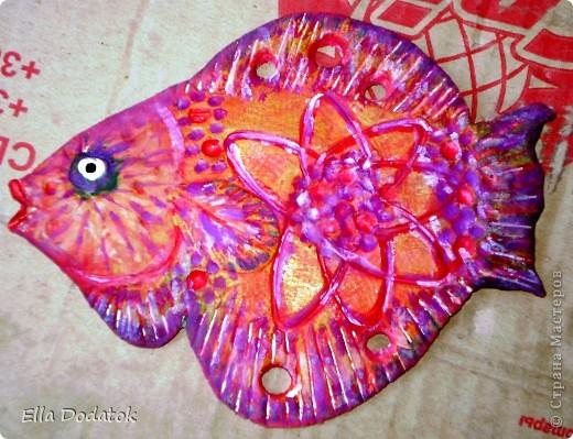мои бабочки фото 11