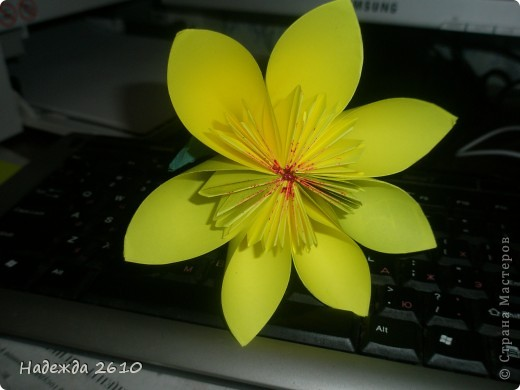 собралась собрать кусудаму, это пробный цветочек. фото 1