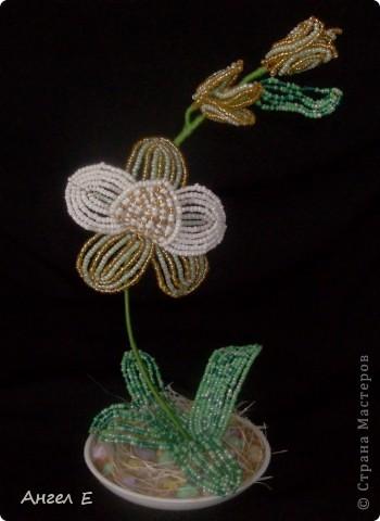 Поделка изделие Бисероплетение цветы из бисера Бисер Гипс Нитки Проволока фото 3.