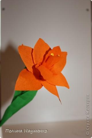Задумка была Королевская лилия... фото 7