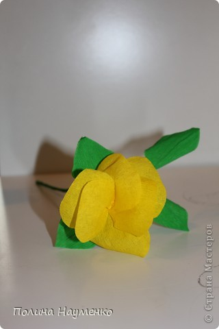 Задумка была Королевская лилия... фото 3