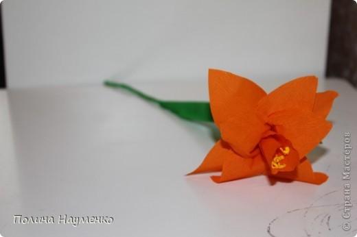 Задумка была Королевская лилия... фото 8