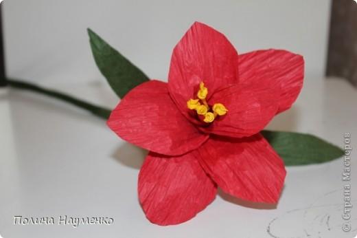 Задумка была Королевская лилия... фото 1