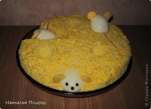Мышки - норушки фото 5