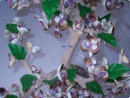 крупные деревья из морских ракушек  высота более 50 см фото 3