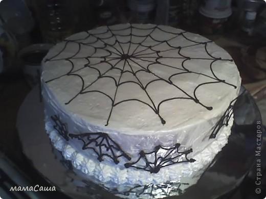 Медовик со сметанным кремом, украшен белковым кремом,паутина из шоколада. фото 2