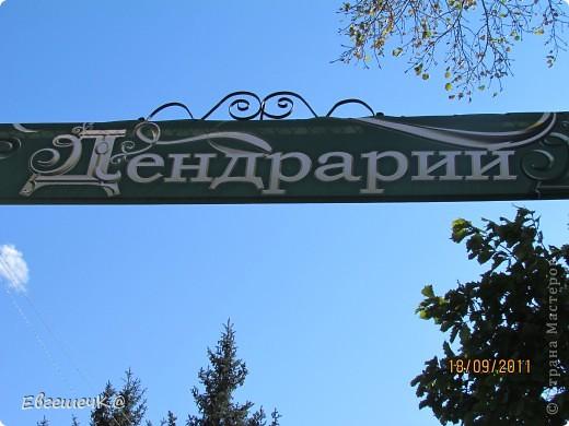 Дендрарий находится в самом центре дальневосточной столицы. Он был основан 19 октября 1896 года.  Так что в этом году ему исполняется 115 лет! фото 1