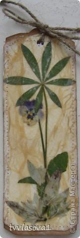 открыточка для дочки фото 4
