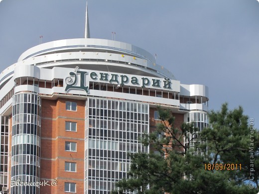Дендрарий находится в самом центре дальневосточной столицы. Он был основан 19 октября 1896 года.  Так что в этом году ему исполняется 115 лет! фото 17