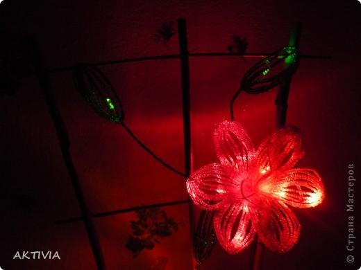 аленький цветочек фото 13