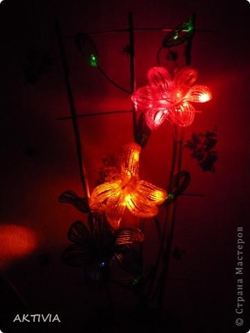 аленький цветочек фото 12