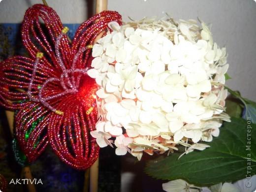 мой бисерный цветок и выращенный мамой. что лучше? =) фото 2