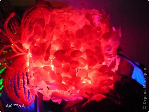 мой бисерный цветок и выращенный мамой. что лучше? =) фото 1