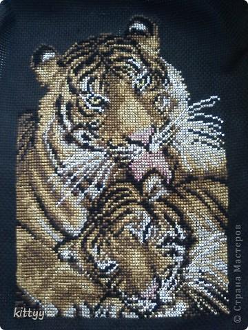 Тигрята Мамуле на именины=)) фото 1