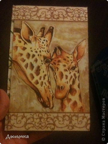 Обложка на паспорт фото 19