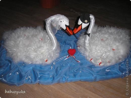 И я теперь с гордостью могу сказать, что у нас есть лебеди! Вот они! фото 1