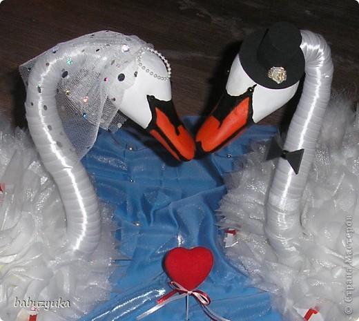 И я теперь с гордостью могу сказать, что у нас есть лебеди! Вот они! фото 2