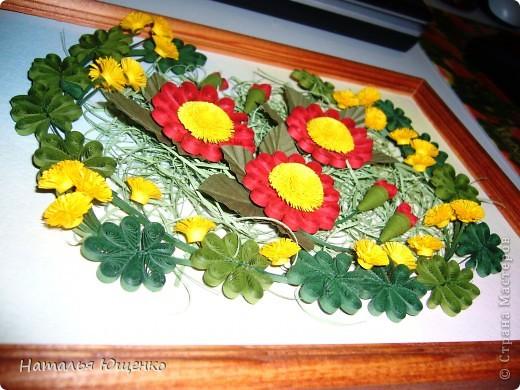 Цветочная полянка фото 3