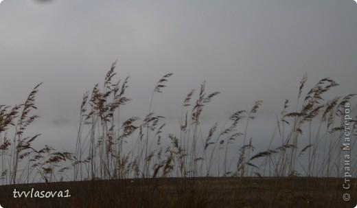 я поймала туман... фото 5
