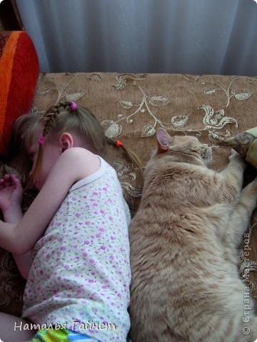Наш котик сегодня получил уютную подстилку в свою любимую постельку. фото 16