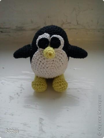 пингвинёнок фото 1
