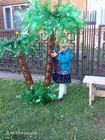 Ландшафтный дизайн Мастер-класс Моделирование конструирование пальма из ПЭТ бутылок Бутылки пластиковые фото 1