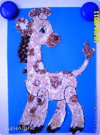 Жирафка фото 1