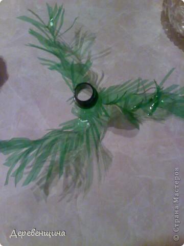 Начинаем делать пальму. Заготовим бутылки. Нужно срезать этикетки, страховочное кольцо от крышки. И обязательно вымыть их!!!  фото 9