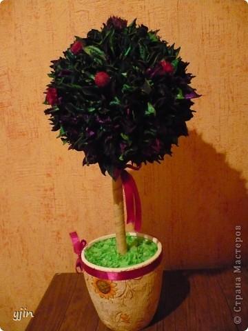 Моё первое деревце!!!