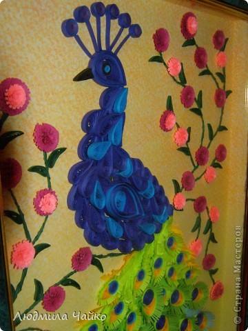 """Вот и у меня дома появился Павлин, назвали мы его с дочкой Павлушей. Вдохновилась на создание Павлина благодаря замечательному мастер-классу от Ольги Ольшак http://stranamasterov.ru/node/87998, а также на память о чудесном парке птиц """"Воробьи"""" (в Подмосковье), где обитают эти красивые птицы! фото 2"""