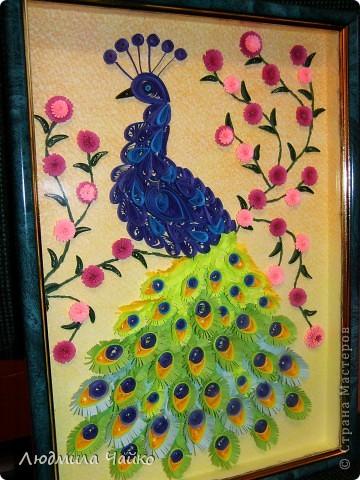"""Вот и у меня дома появился Павлин, назвали мы его с дочкой Павлушей. Вдохновилась на создание Павлина благодаря замечательному мастер-классу от Ольги Ольшак http://stranamasterov.ru/node/87998, а также на память о чудесном парке птиц """"Воробьи"""" (в Подмосковье), где обитают эти красивые птицы! фото 1"""