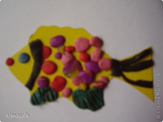Вот такая у нас получилась рыбка. Маленькая, но, тем не менее, терпения всё равно не хватило на то, чтобы оформить верхний плавничок. Зато всё делал сам. Даже стекой отрезал лишнее и ею же делал полоски на плавничках. фото 1