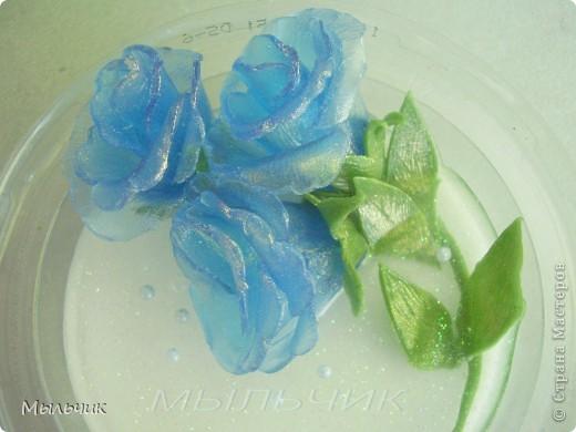 Голубые эустомы. ( 3 фото) фото 3