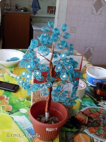 синее дерево в горшочке  фото 3
