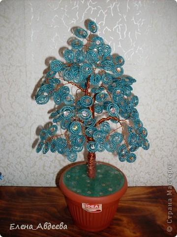 синее дерево в горшочке  фото 1