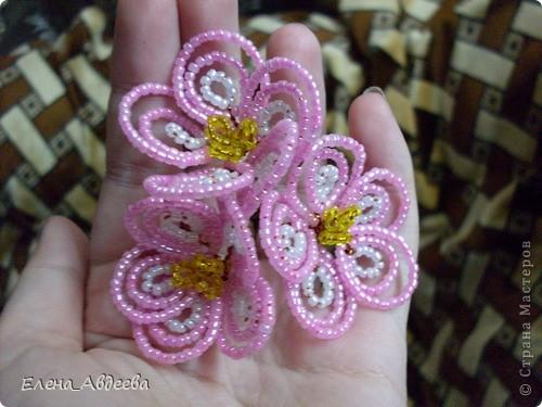 весеннее дерево с розовыми цветочками  фото 2