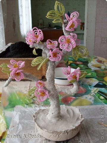 весеннее дерево с розовыми цветочками  фото 3