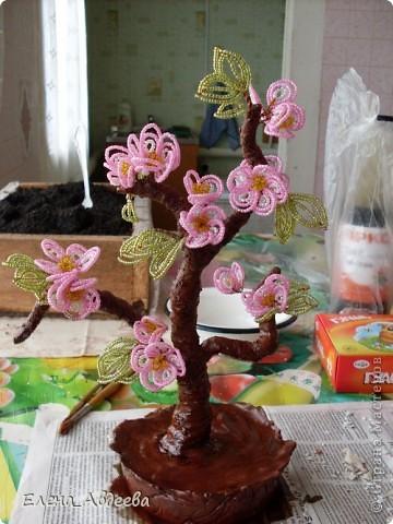 весеннее дерево с розовыми цветочками  фото 4
