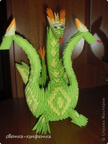 Дракон- символ будущего года фото 2
