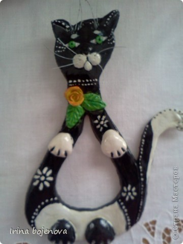 Черно белый кот!