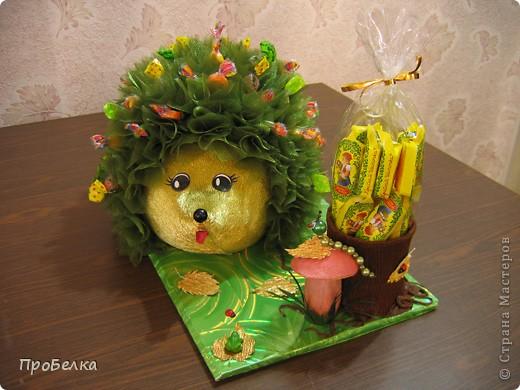 На день рождения дочери(6 лет) всей остальной семьёй сделали такого Ёжика с конфетами. С ним она сегодня ушла в дет.сад. фото 2