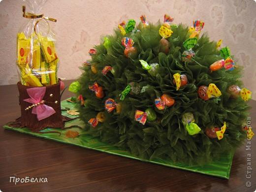 На день рождения дочери(6 лет) всей остальной семьёй сделали такого Ёжика с конфетами. С ним она сегодня ушла в дет.сад. фото 4