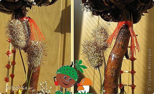 """Я вошла в азарт и """"вырастила"""" еще одно деревце. На сей раз каштановое. Люблю каштанчики, захотела их красиво во что-то пристроить. Вот результат ;))  фото 6"""